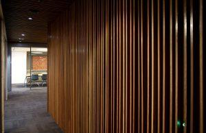 Wooden cedar walls in an office